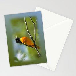 Orange Oriole Stationery Cards