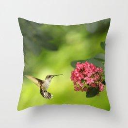 Hummer in Flight Throw Pillow