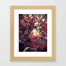 Red is the Tree that Grows Framed Art Print