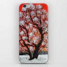 Snowy old tree iPhone & iPod Skin