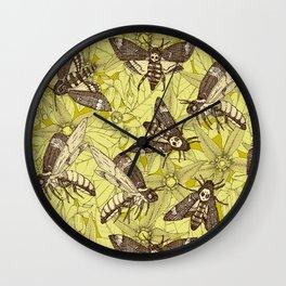 Death's-head hawkmoth chartreuse Wall Clock