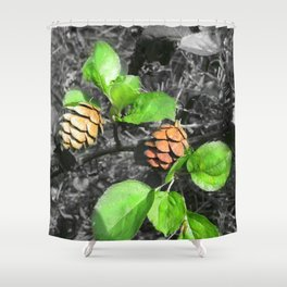 Forest Cones Shower Curtain