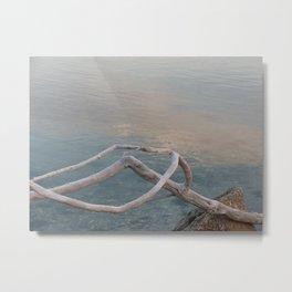 Driftwood Dawn, Florida Metal Print