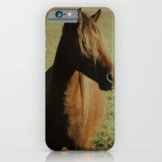 Dark Horse iPhone 6 Slim Case