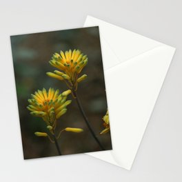 Yellow Blossoms Stationery Cards