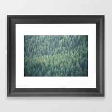 Forest Immersion Framed Art Print