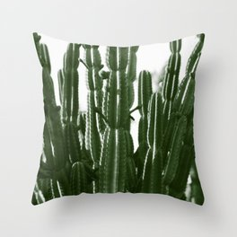 Vintage Cactus Print II Throw Pillow