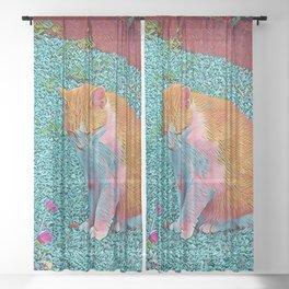Popular Animals - Cat Sheer Curtain