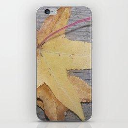 Backyard Leaves iPhone Skin