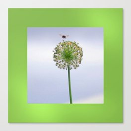 bee nice Canvas Print