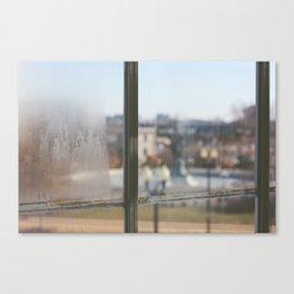 What a View Canvas Print