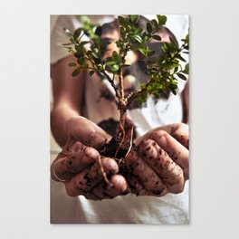 Taking Care  Canvas Print