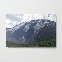 Meadow and Mountain Alpine Landscape Metal Print
