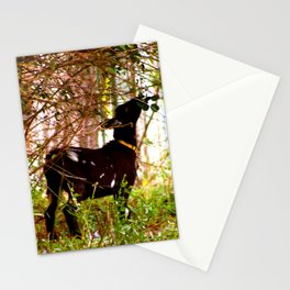 Lunch Time! Stationery Cards