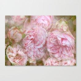 Vintage English Roses Canvas Print