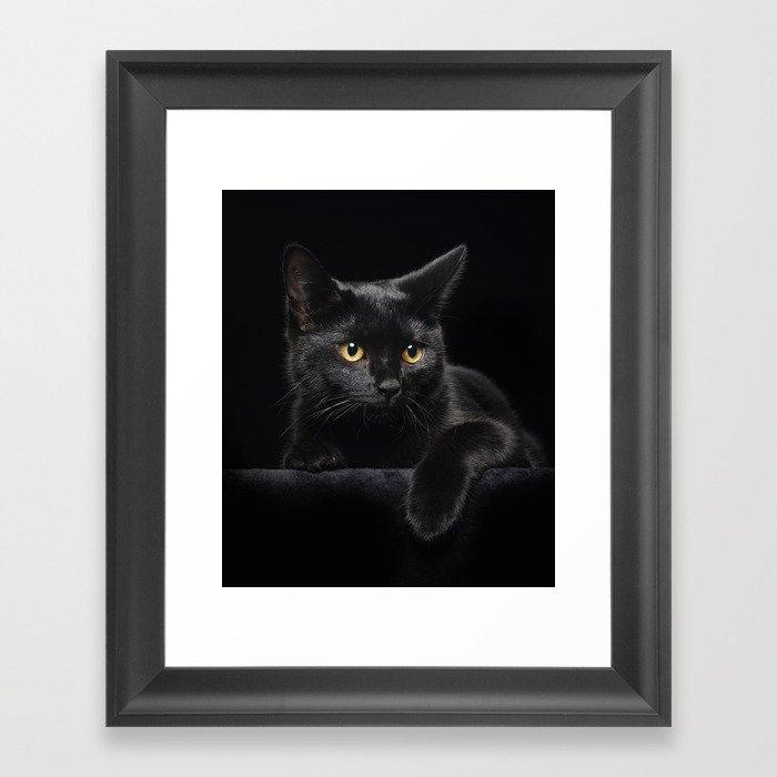 Black Cat Gerahmter Kunstdruck