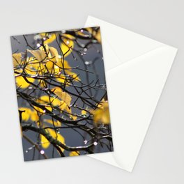 Yellow Birch Leaves, Raindrops, & Sunlight 2 Stationery Cards