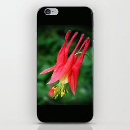 Wild Columbine iPhone Skin