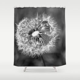 Dandelion & Autumn Shower Curtain