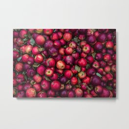 A photograph of a bunch of red apples freshly picked. Metal Print