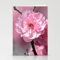 cherry blossoms Stationery Cards featuring Cherry Blossoms by Zen and Chic
