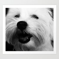 terrier Art Prints featuring Terrier by liberthine01