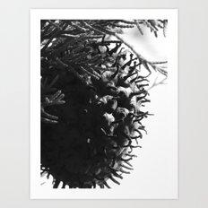 strange fungus 2017 Art Print