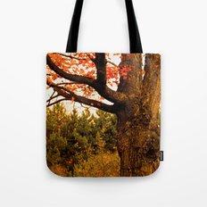 Autumn Lights Tote Bag