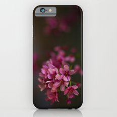Kyoto Night Sakura, Japan 2015 iPhone 6s Slim Case