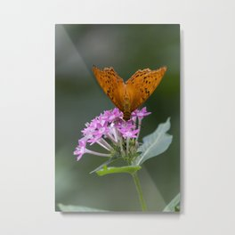 Little Butterfly Metal Print