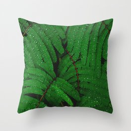 Layers Of Wet Green Fern Leaves Patterns In Nature Throw Pillow