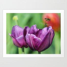 Bee flyover Art Print