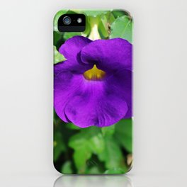King's Mantle iPhone Case