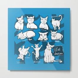 Cat Emotions Metal Print