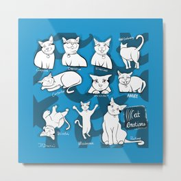 Cat Emotions Metal Print