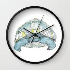 Turquoise Tortoise Illustration Wall Clock