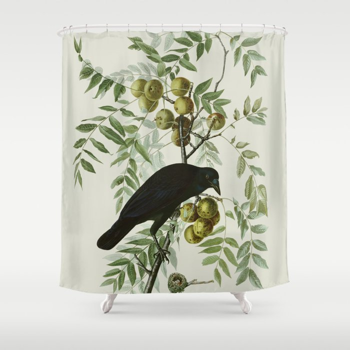 Vintage Crow Illustration Shower Curtain