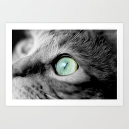 IN HER EYES Art Print