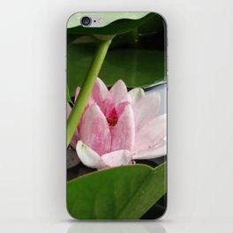 Beautiful White Pink Lotus iPhone Skin