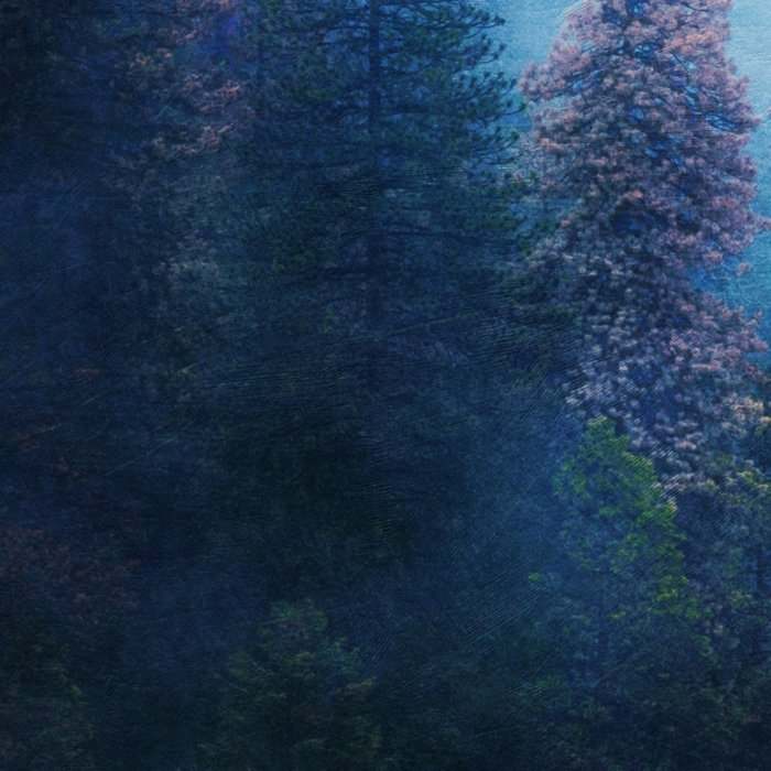 Dreamy Winter Forest Leggings