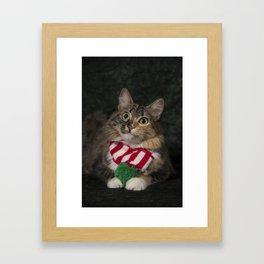Holiday Arbor Framed Art Print