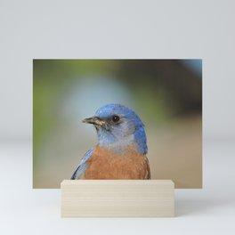Bluebird in La Verne Mini Art Print