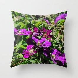 Lingering Effects Throw Pillow