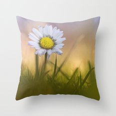Shining Star.... Throw Pillow