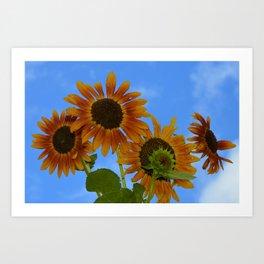never trust a perfect sunflower Art Print