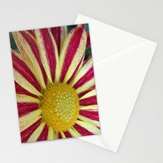 The Striped Dress Stationery Cards
