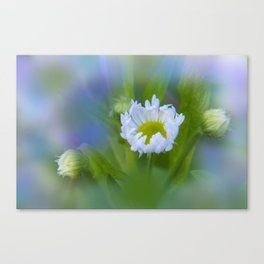 the beauty of a summerday -123- Canvas Print