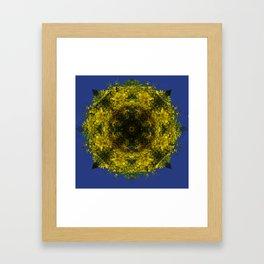 acacias-amarillas Framed Art Print