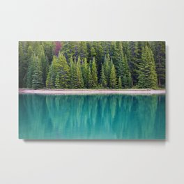 The Forest on the Water (Color) Metal Print