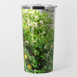 Meyer Lemon Tree Top Travel Mug